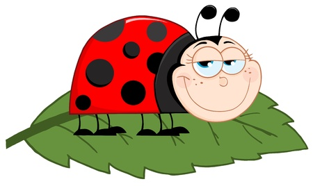 Happy Ladybug On A Leaf Stock Vector - 12493545