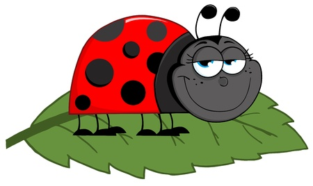 crawling animal: Happy Cartoon Ladybug On A Leaf Illustration