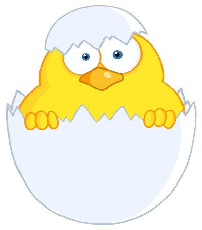 cartoons designs: Surprise Yellow Chick Peeking Out Of An Egg Shell Illustration