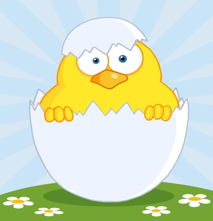 cracked egg: Surprise Yellow Chick Peeking Out Of An Egg Shell Illustration