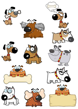 Diferentes razas de perro de colección