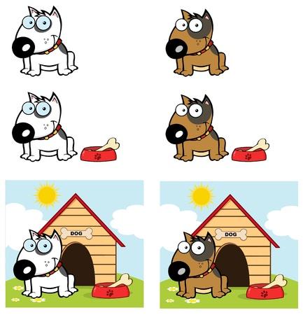 Bull Terrier Dog Verschillende Color Collection