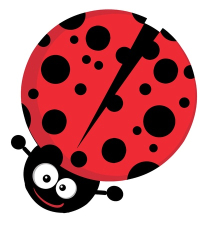 lady bird: Lady Bug Cartoon Character Illustration