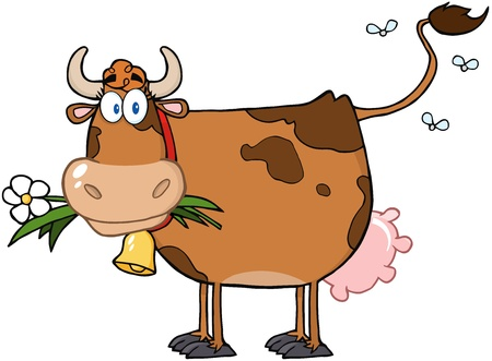 non    urban scene: Brown Dairy Cow With Flower In Mouth
