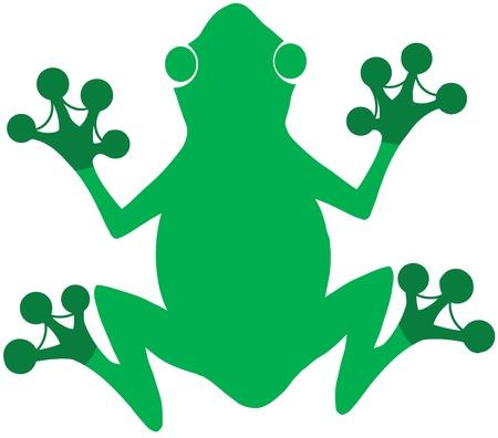 Green Frog Logo Stock Vector - 19986673