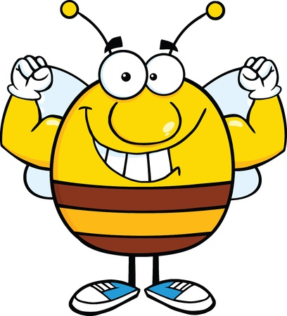 pollinator: Smiling Pudgy Bee Cartoon Mascot Character Showing Muscle Arms Illustration