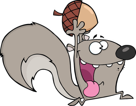 Crazy Gray Squirrel Cartoon Mascot Character Running With Acorn Vector