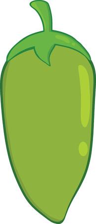 jalapeno pepper: Green Chili Pepper Illustration