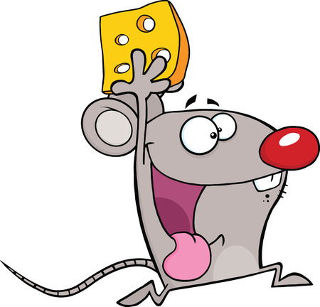 Happy Mouse Cartoon Mascot Character Running With Cheese  Illustration Isolated on white Vector