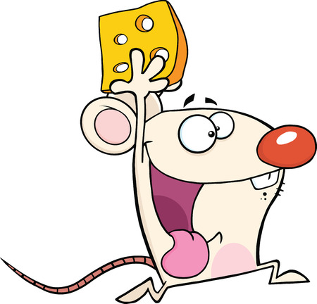 Happy White Mouse Cartoon Mascot Character Running With Cheese  Illustration Isolated on white Ilustração