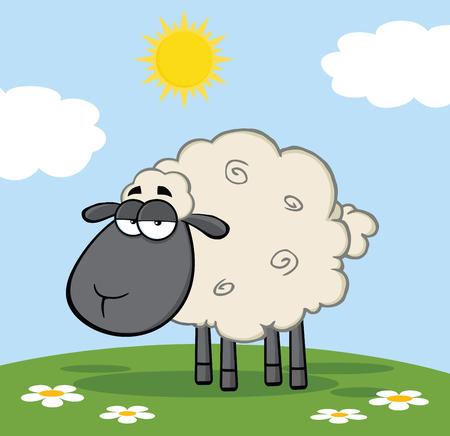 pasen schaap: Leuke Zwarte Hoofd Schapen Op Een Weide