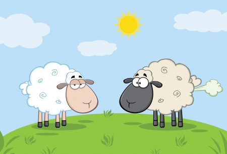 farting: White Sheep And Farting Black Head Sheep On A Meadow