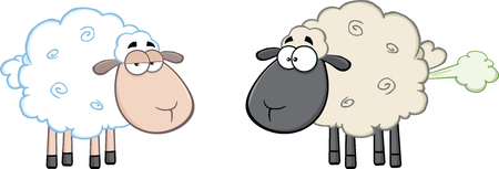 farting: White Sheep And Farting Black Head Sheep  Illustration Isolated on white