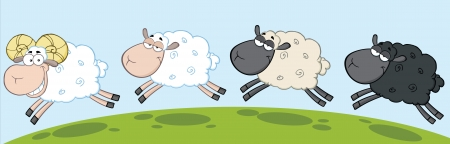 White Ram Sheep Leading Three Sheep Vector
