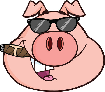 cigars: Businessman Pig Head With Sunglasses And Cigar  Illustration Isolated on white