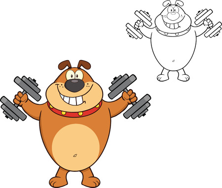 Smiling Brown Bulldog Cartoon Mascot Character Training With Dumbbells  Illustration Isolated on white