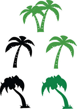 Silhouette Palm Tree  Set Collection Vector
