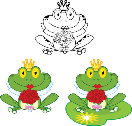 Smiling Bride Frog  Set Collection Vector