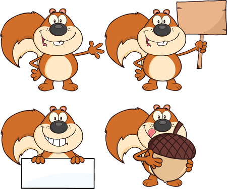 Squirrel Cartoon Mascot Character  Collection Set Vettoriali