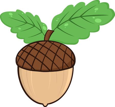 acorn seed: Acorn With Oak Leaves Cartoon Illustrations Illustration