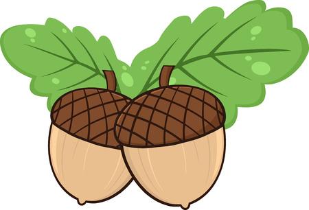 acorn seed: Two Acorn With Green Oak Leaves Cartoon Illustrations. Illustration Isolated on white Illustration