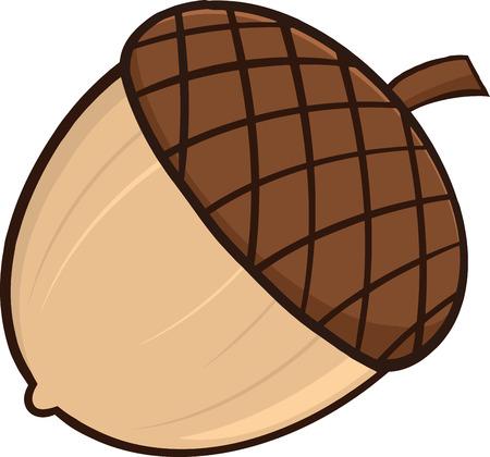 Acorn Cartoon Illustrations