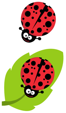 lady beetle: Cute Lady Bug Cartoon Character. Collection Set