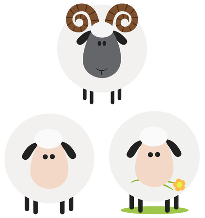 Ram And Sheep Modern Flat Design . Collection Set Isolated on white Vector