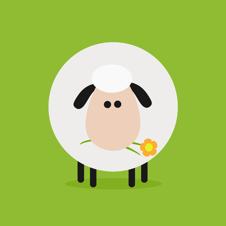spring coat: Cute White Sheep With A Flower.Modern Flat Design