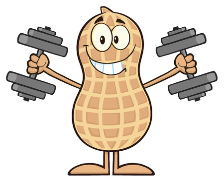 monkey nuts: Smiling Peanut Cartoon Character Training With Dumbbells. Illustration Isolated On White