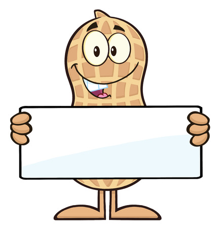 primate biology: Peanut Cartoon Character Holding a Blank Sign. Illustration Isolated On White Illustration