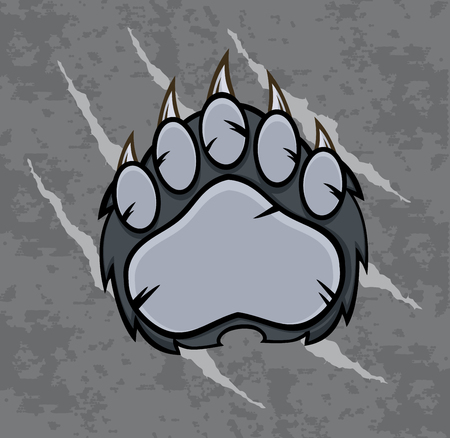 scratches: Gray Bear Paw With Claws. Illustration With Scratches Grunge Background