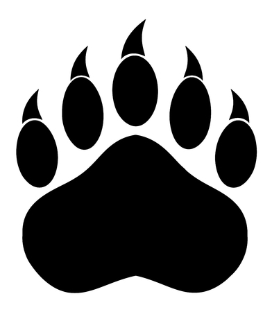 animal foot: Black Bear Paw With Claws. Illustration Isolated On White