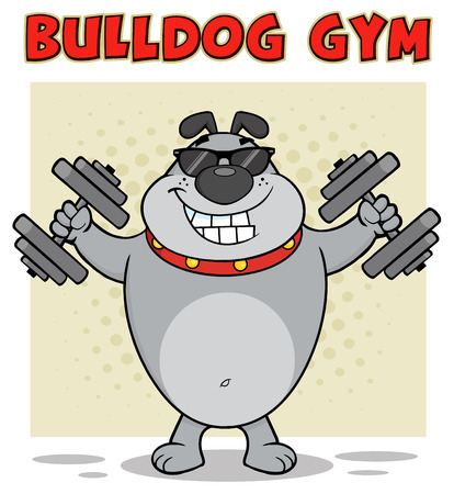 Bulldog Cartoon Mascot Character With Sunglasses Working Out With Dumbbells. Illustration With Background And Text Bulldog Gym Isolated On White Stock Photo