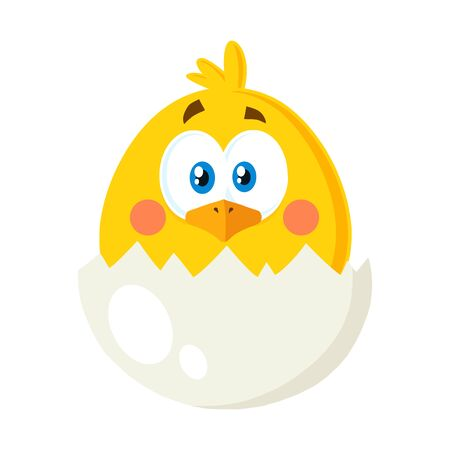 Yellow Chick Cartoon Character Out Of An Egg Shell. Vector Illustration Flat Isolated On Transparent Background Фото со стока