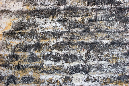 mustiness: Old brick wall texture