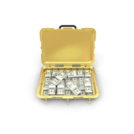 case with the money isolated on white background. 3d render photo
