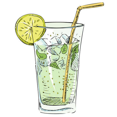Soda glass with citrus segment and ice cubes Illustration
