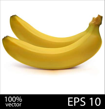 Two bananas in batch Vector