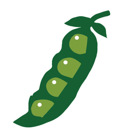 soybean: Peas green cartoon vector illustration