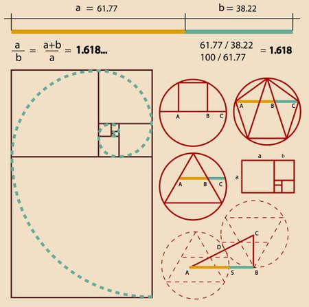 matematica: Proporci�n �urea, proporci�n �urea