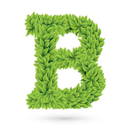 illustration of letter B illustration