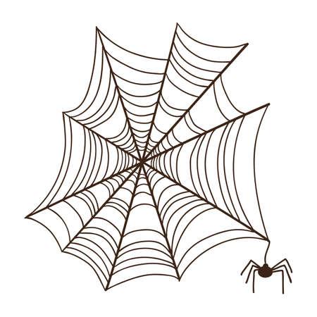 spider web: Spider web.  Illustration