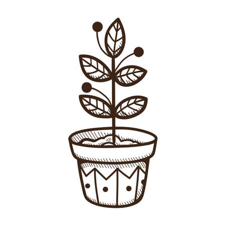 plant pot: Plant growing in a pot. Illustration
