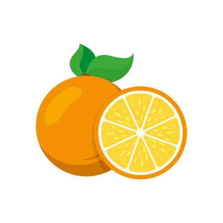 Orange. Illustration