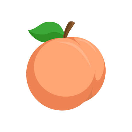 Peach. Illustration