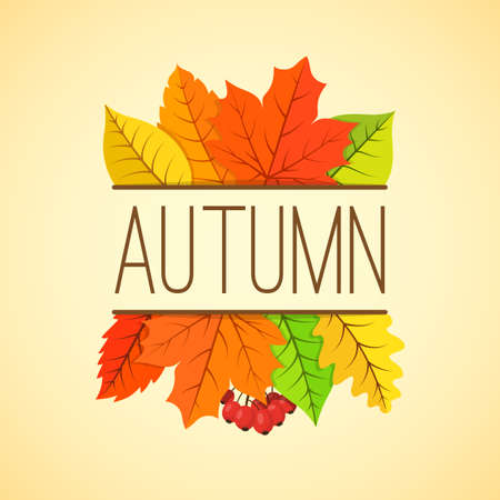 fall: Orange yellow fall leaves and text. Eps 10 vector illustration.