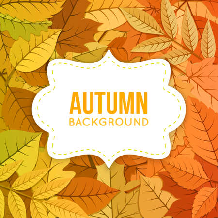 leaf: Orange yellow fall leaves and text. Eps 10 vector illustration.