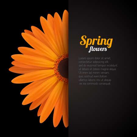 Conception de fond de saison de printemps. Illustration redimensionnable de vecteur.