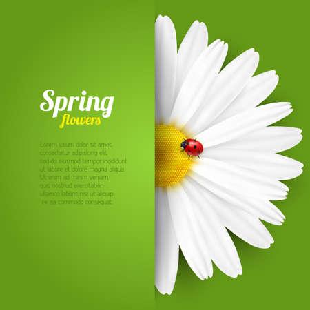 Bright spring background design. Vector resizable illustration. Ilustrace